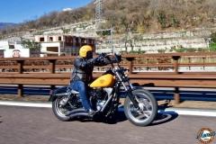 HarleySnow_2017-Ferro-2