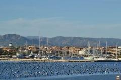 SardiniaRun2015-Targa-18